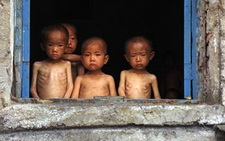 north-korean-famine
